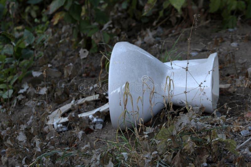 Toilette, arricciamenti ambientali sul bordo della strada fotografia stock libera da diritti