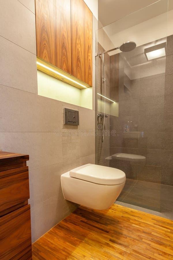 toilette avec la douche photo stock image 40533688. Black Bedroom Furniture Sets. Home Design Ideas