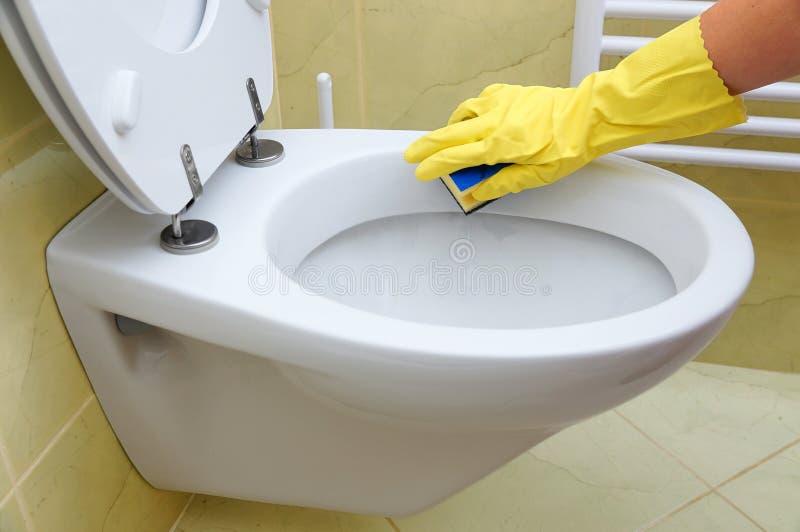 Toilette de nettoyage photographie stock