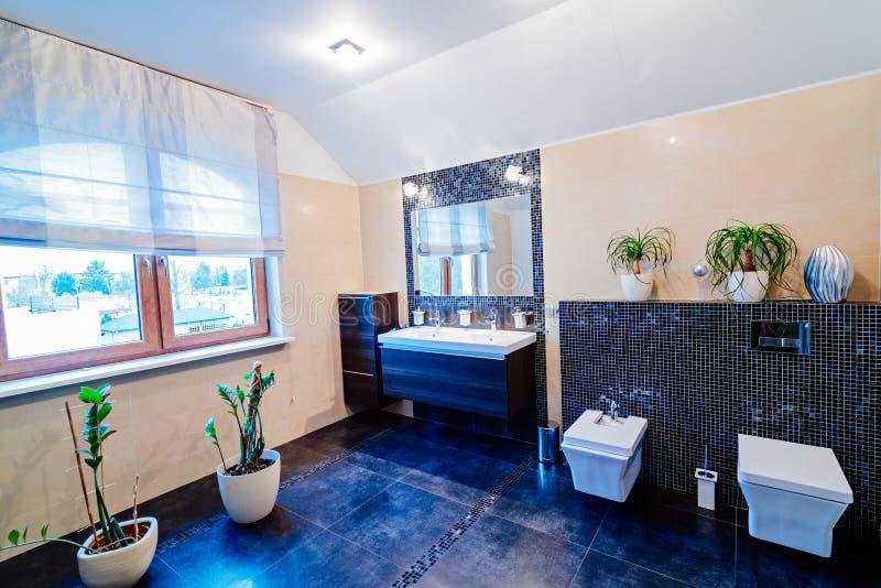Toilette moderna con il lavandino immagine stock libera da diritti