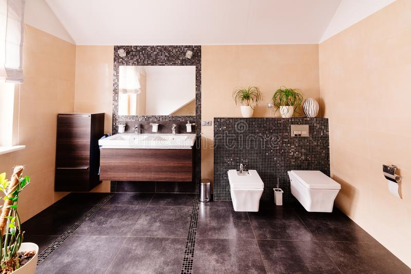 Toilette moderna con il lavandino fotografia stock libera da diritti