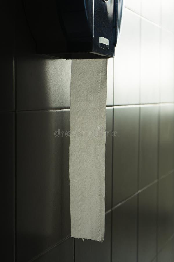 Toilettenpapier in der Toilette lizenzfreie stockbilder