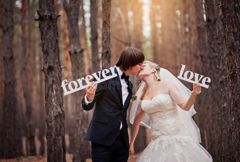 Toilettez embrasser la jeune mariée à un mariage dans la forêt d'automne et ho photo stock