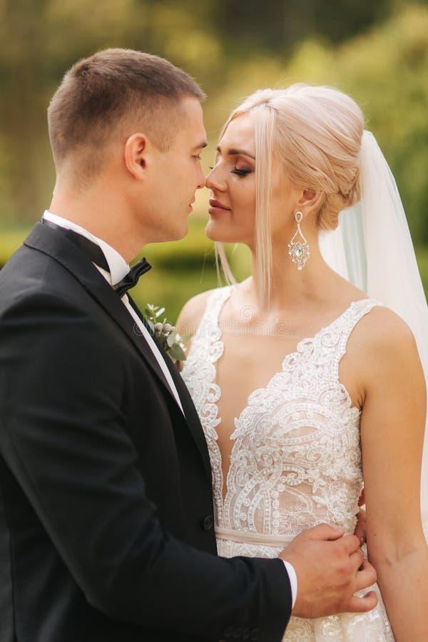 Toilettez le baiser sa jeune mari?e dans le nez Portrait des nouveaux mari?s dehors photos stock