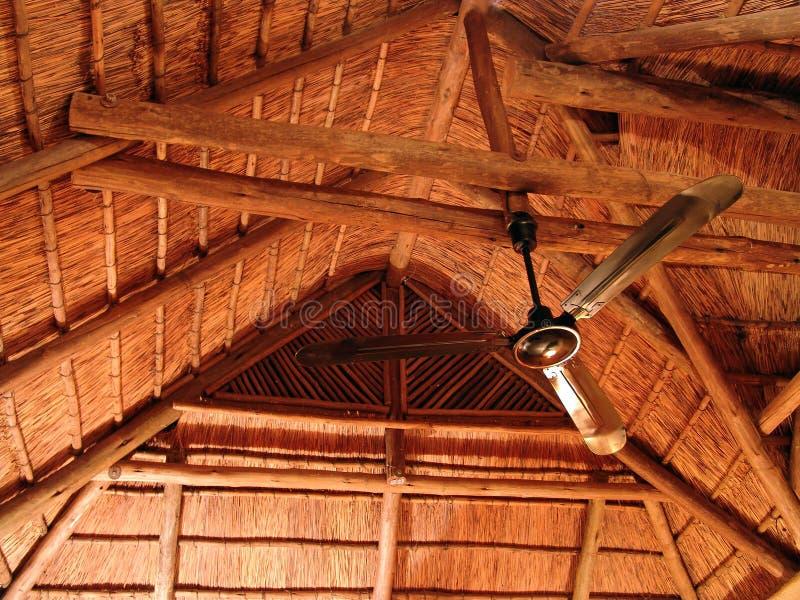 Download Toit couvert de chaume image stock. Image du timber, abri - 729019