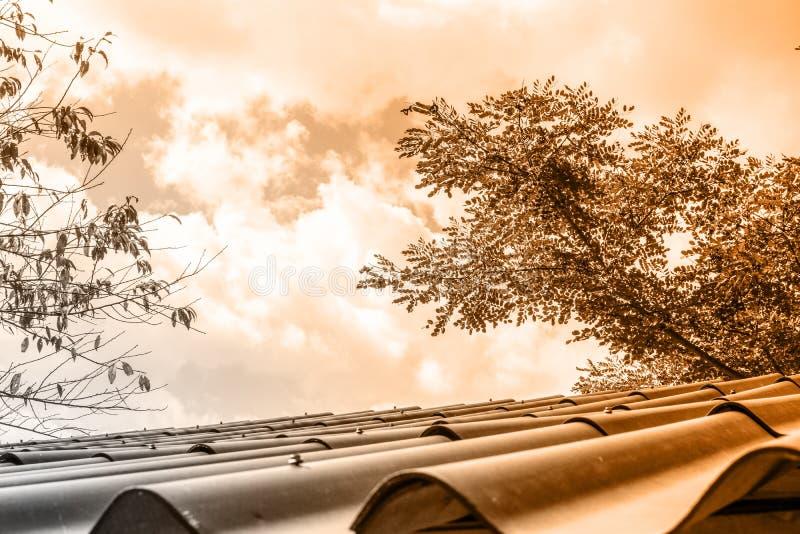 Toit de vintage avec la belle lumière orange photographie stock libre de droits