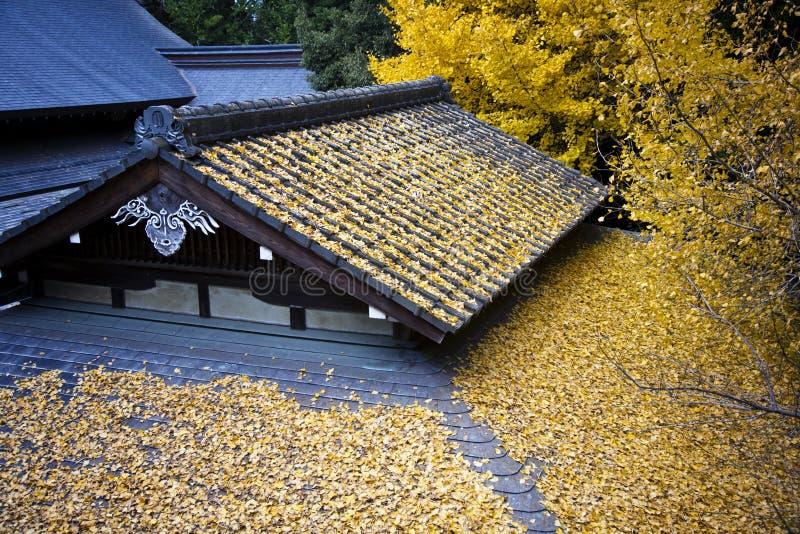 toit japonais de temple couvert par des lames photos stock. Black Bedroom Furniture Sets. Home Design Ideas