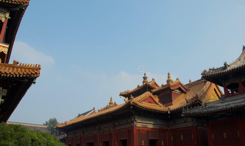 Toits de palais ou de temple chinois - Cité interdite, Pékin Chine image libre de droits