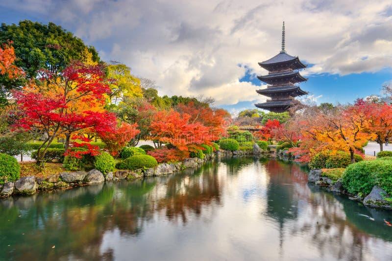 Toji Pagoda in Autumn royalty free stock image