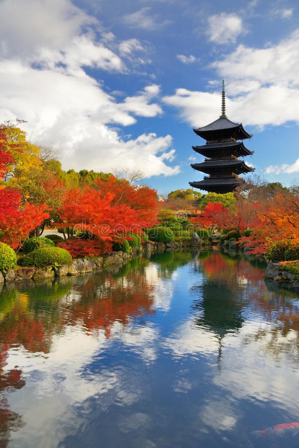 Toji Pagoda i Kyoto, Japan royaltyfri fotografi