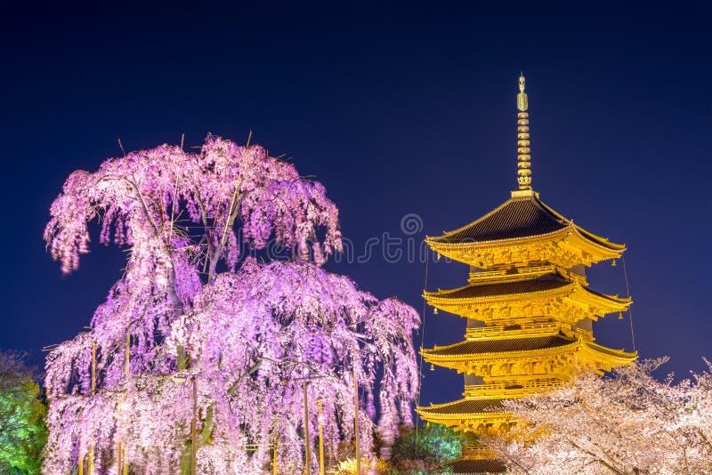 Toji Pagoda in Kyoto royalty free stock photos