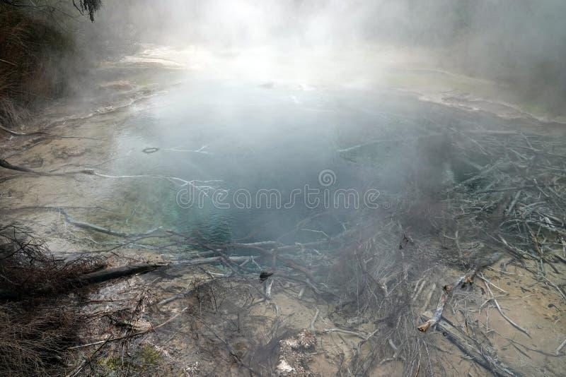 Tokaanu Termiczni baseny przy Jeziornym Tekapo, Nowa Zelandia obraz stock