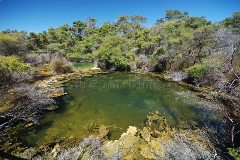Tokaanu Thermal springs royalty free stock photo