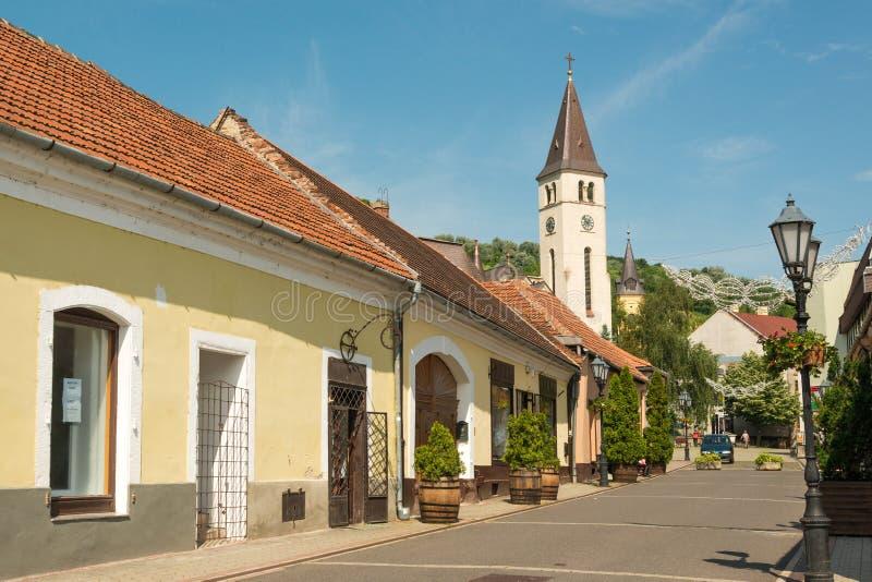 Tokaj town royalty free stock photography