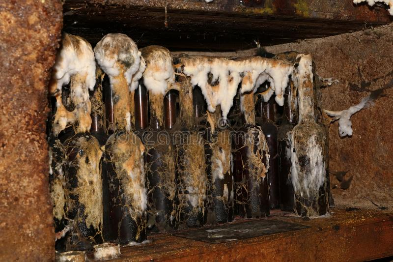 Tokaj wine bottles with mold in winery cellar stock photos