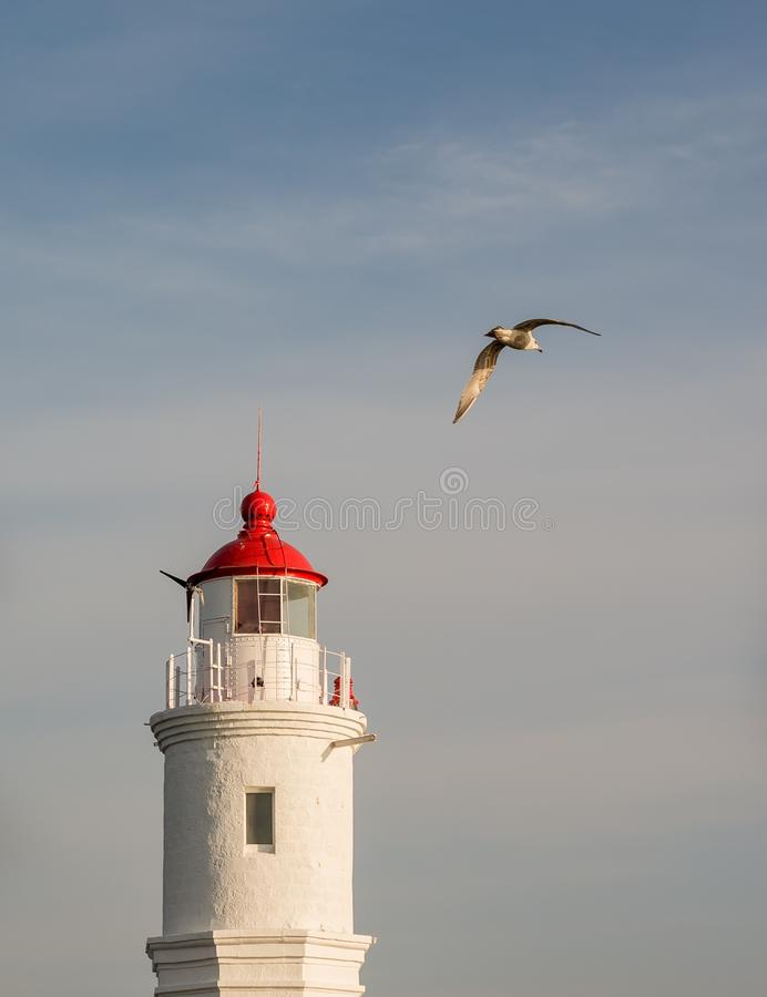 Download Tokarevskiy Lighthouse In Vladivostok, Russia. Stock Image - Image of seagull, tower: 90644891