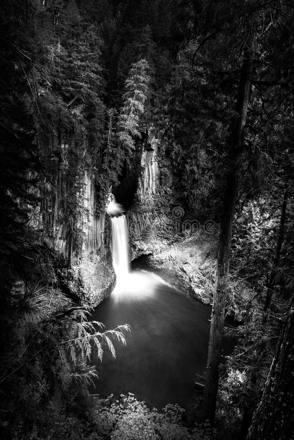 Toketee понижается Douglas County Орегон черно-белый стоковое изображение rf