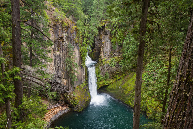 Toketee baja Oregon fotografía de archivo