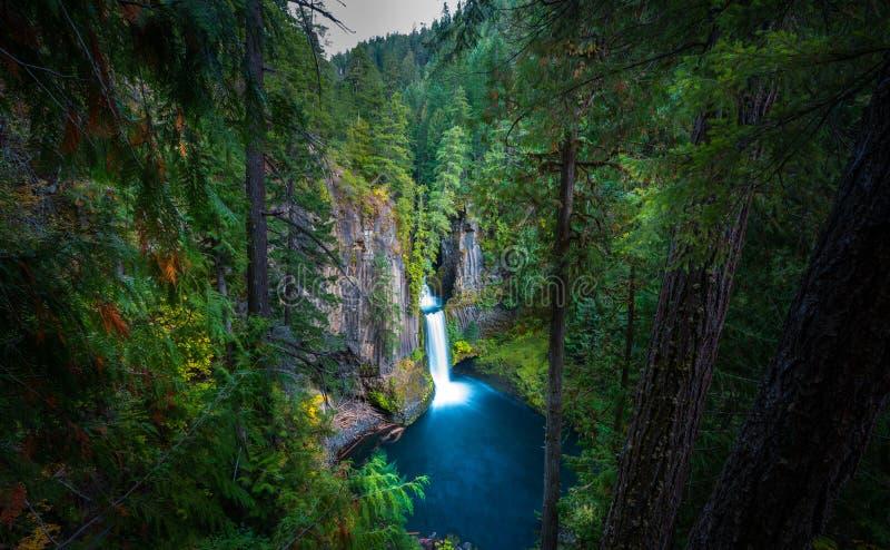 Toketee faller Douglas County Oregon arkivbilder