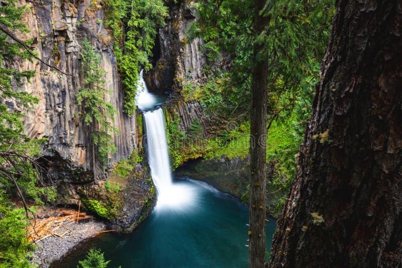 Toketee Falls, Oregon, Umpqua National Forest, Stati Uniti d'America, Travel USA, all'aperto, al paesaggio, alla natura, allo sfo fotografie stock