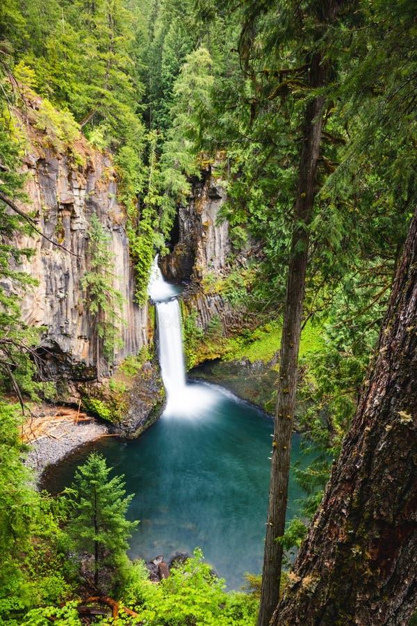 Toketee Falls, Oregon, Umpqua National Forest, Stati Uniti d'America, Travel USA, all'aperto, al paesaggio, alla natura, allo sfo immagine stock