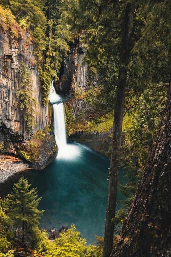 Toketee Falls, Oregon, Umpqua National Forest, Stati Uniti d'America, Travel USA, all'aperto, al paesaggio, alla natura, allo sfo fotografia stock libera da diritti