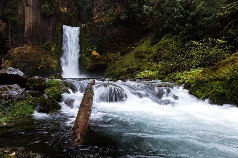 Toketee nedgångar, Umpqua nationalskog, Oregon arkivbild