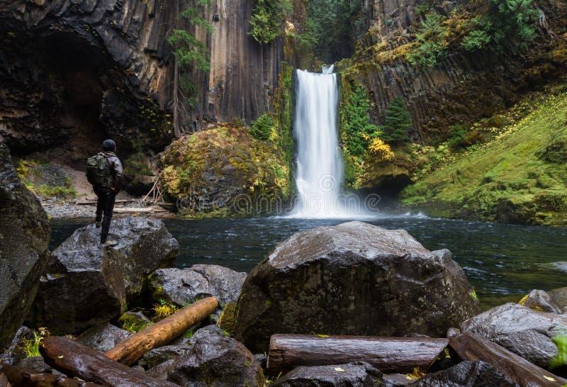 Toketee nedgångar, Umpqua nationalskog, Oregon royaltyfri fotografi