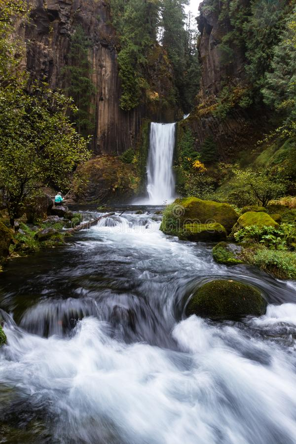 Toketee nedgångar, Umpqua nationalskog, Oregon royaltyfri foto