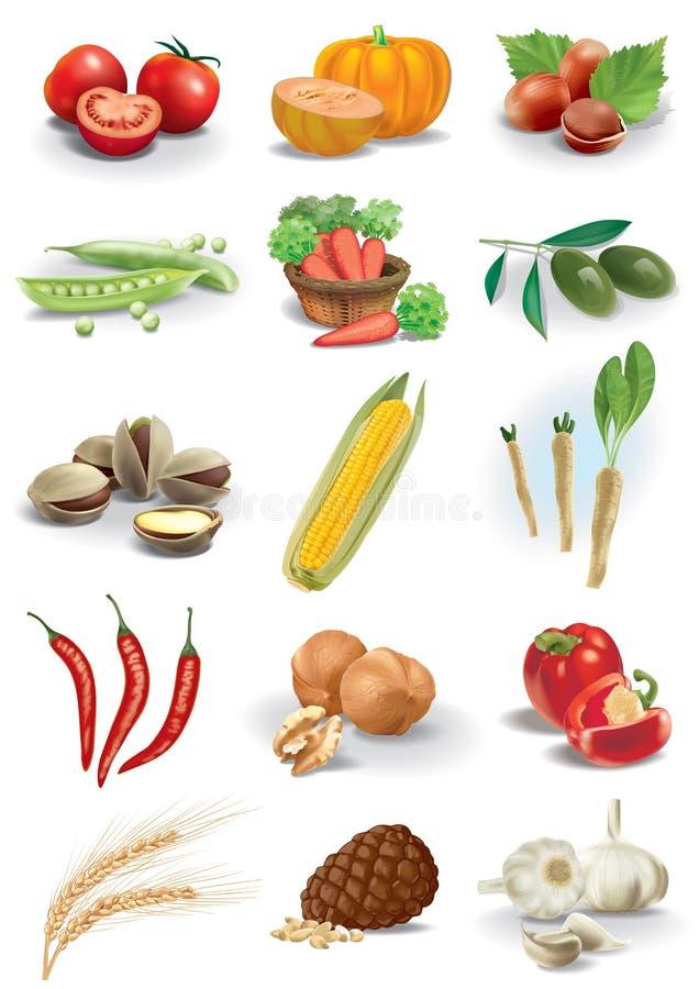 Tokiga grönsaker och art royaltyfri illustrationer