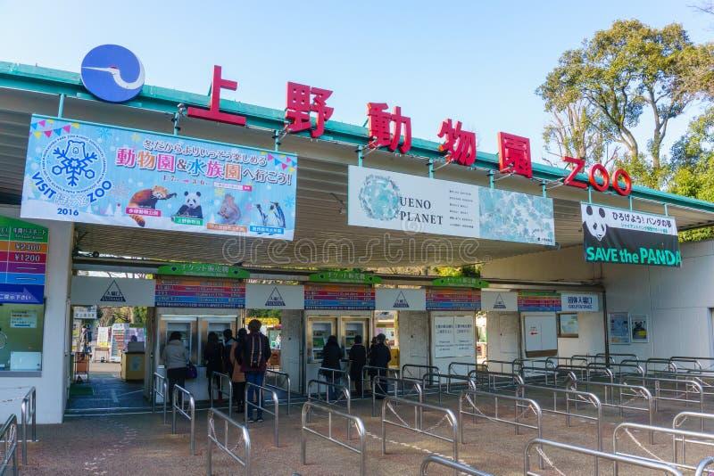 Tokio, Japón - 27 de enero de 2016: Parque zoológico de Ueno en el parque de Ueno Tokio, Japón fotografía de archivo libre de regalías