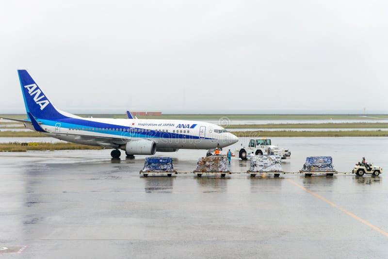 TOKIO, JAPÓN - 27 DE NOVIEMBRE DE 2016: aeroplano actuado por todo el Nipón Ai foto de archivo