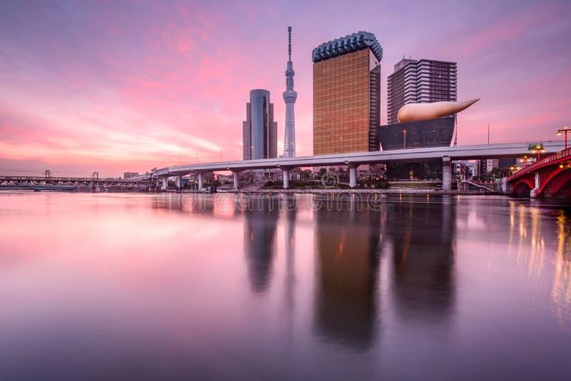 Tokio, Japón en el amanecer fotografía de archivo