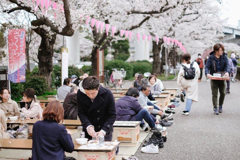Tokio Japonia, Kwiecień, - 2, 2019: Szczęśliwy japończyk świętuje robi pinkinowi blisko Sakura czereśniowego okwitnięcia drzew, p obrazy royalty free