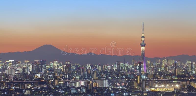 Tokio miasta widok i Tokyo nieba drzewo z Mt Fuji zdjęcie royalty free