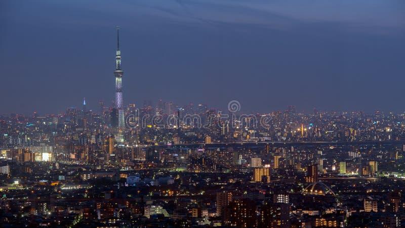 Tokio miasta widok z Tokio nieba drzewem obrazy royalty free