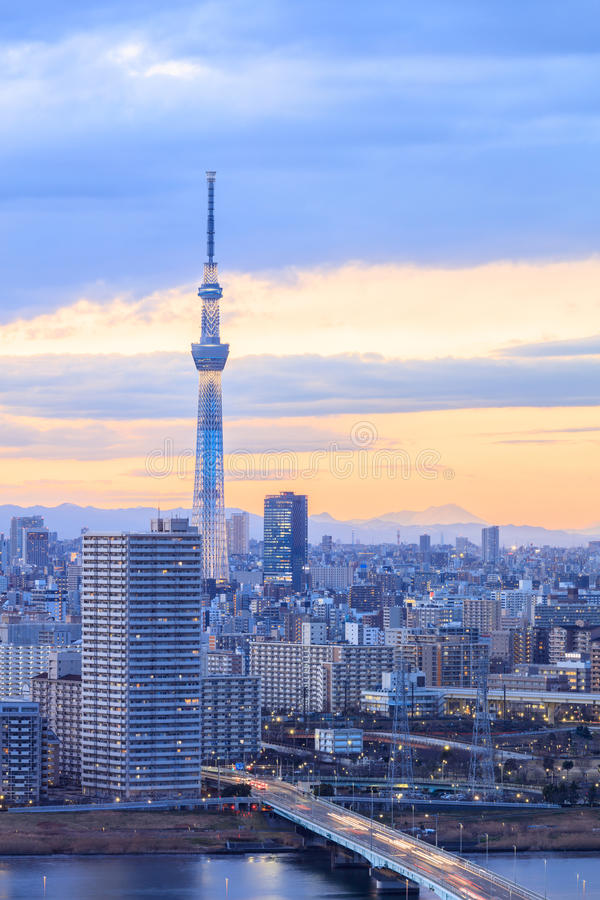 Tokio miasto z Tokyo nieba drzewem przy zmierzchu czasem zdjęcie royalty free