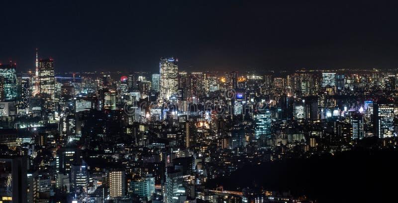 Tokio night view, Tokio, Japan royaltyfria foton