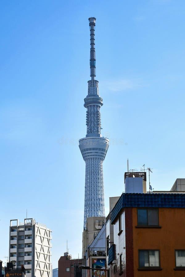 Tokio SkyTree na Jasnym Listopadu dniu obraz stock