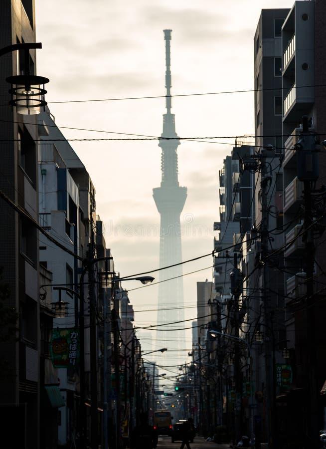 Tokio Skytree sylwetka w wczesnym poranku nad alleyway w ruchliwie mie?cie obraz stock