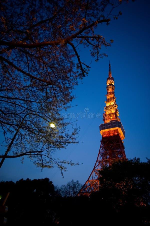 Tokio wierza przy mrocznym niebieskim niebem obraz stock