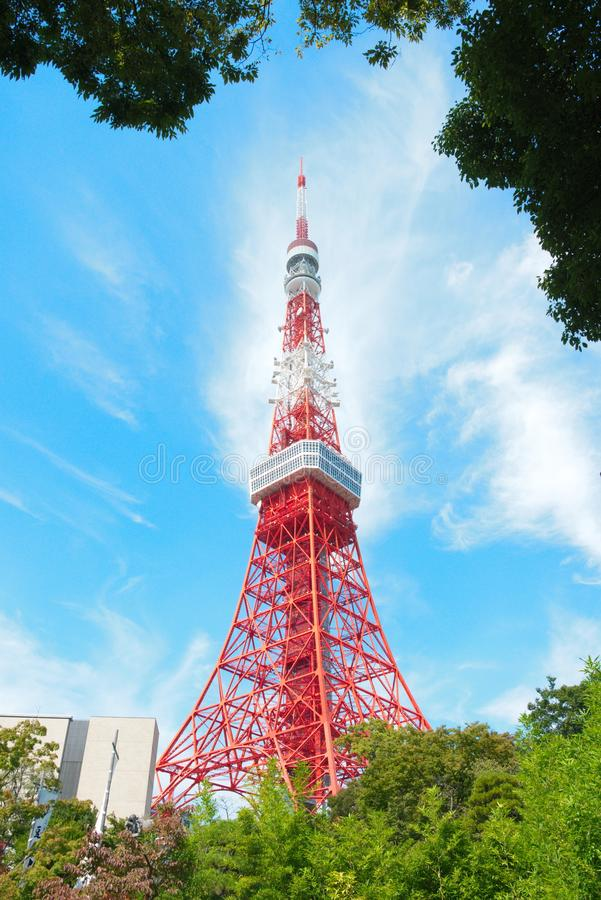 Tokio wierza z jaskrawym niebieskim niebem na słonecznym dniu, Tokio, Japonia zdjęcie stock