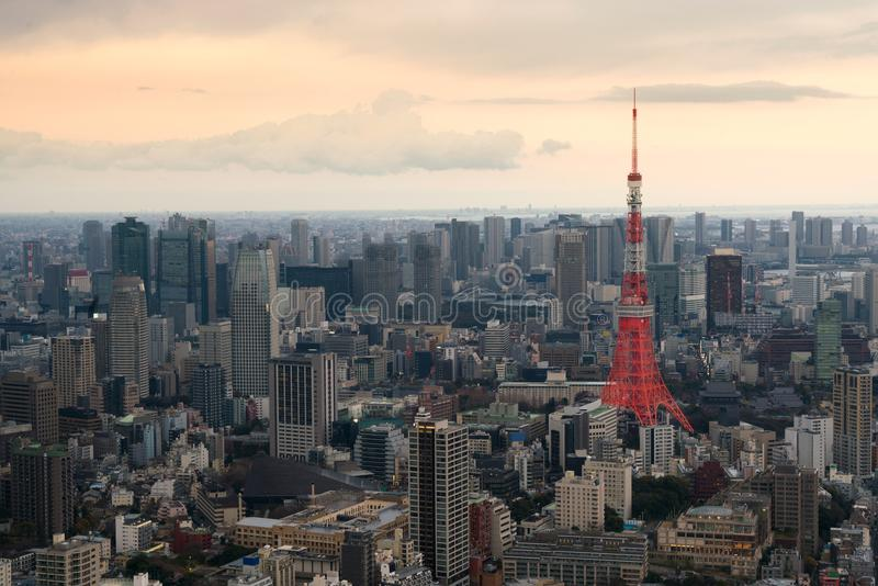 Tokyo city view with Tokyo Tower at evening in Japan. Skyscraper. S in downton city stock photos