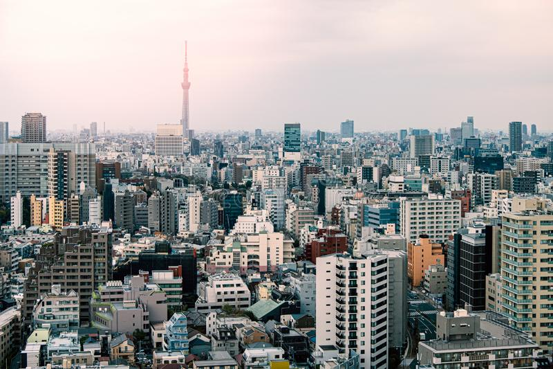 Tokyo cityscape in the morning royalty free stock photos