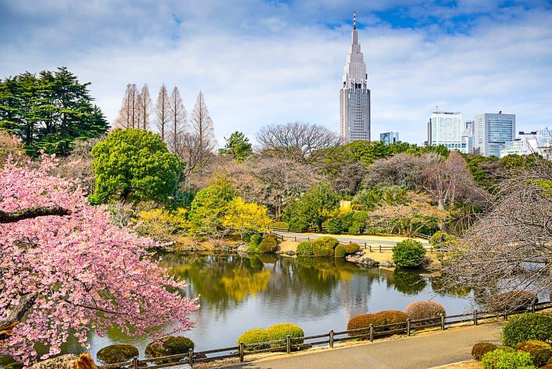 Tokyo in de Lente royalty-vrije stock afbeeldingen