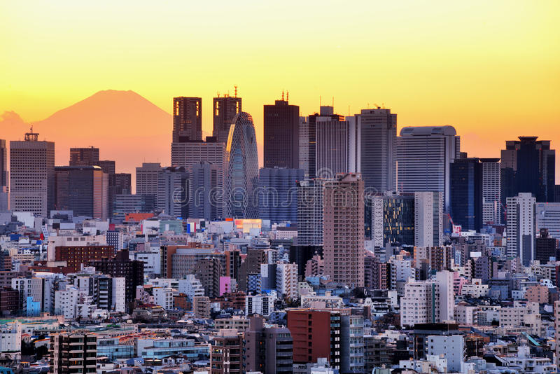 Tokyo en Fuji stock afbeelding