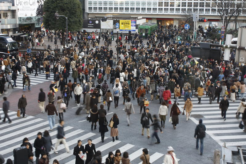 Tokyo Februari 12, 2012: Shibuya korsning arkivbilder