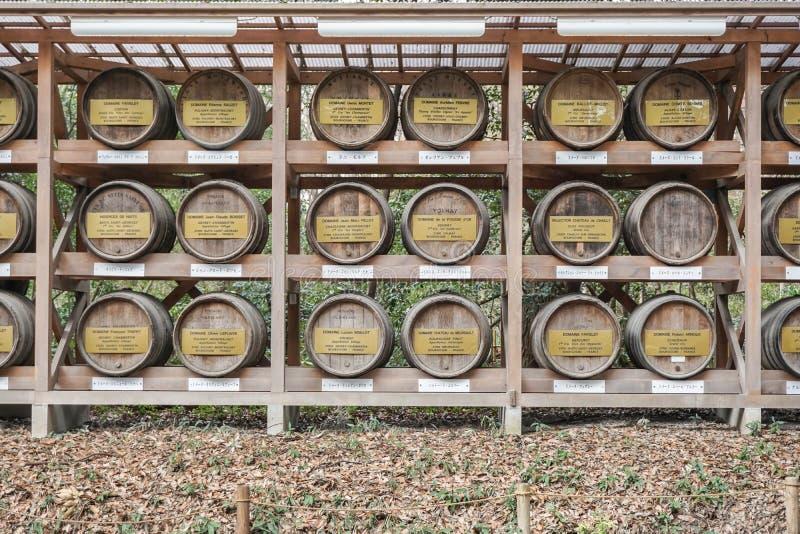 Tokyo, Giappone - 13 marzo 2016: Barilotti di legno impilati di vino a Meiji immagini stock