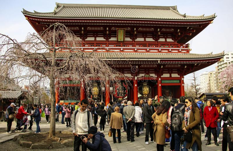 TOKYO, GIAPPONE - 25 MARZO 2019: Molta gente che cammina intorno in tempio neary di Senso-ji di area di Asakusa in Asakusa immagini stock