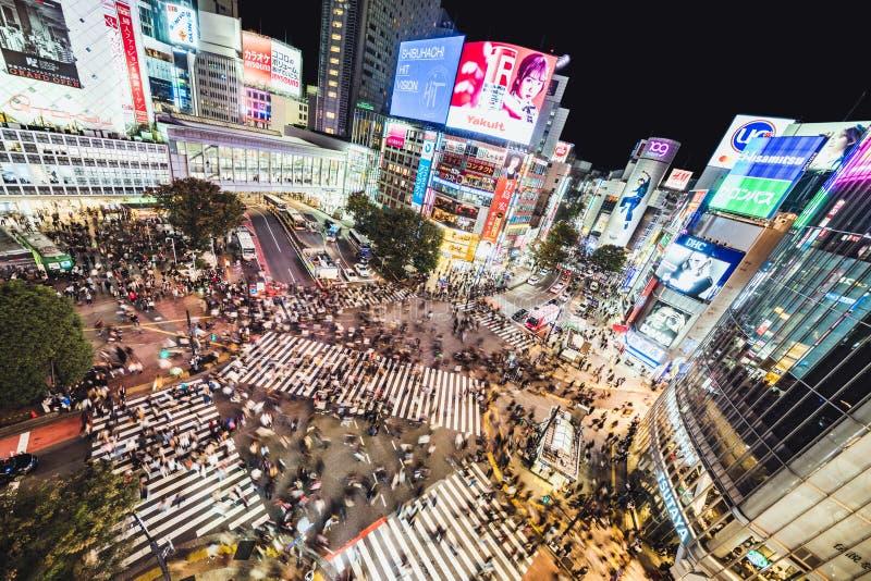 Tokyo, Giappone - 3 nov 2019: La gente affollata cammina e il traffico stradale a Shibuya attraversa la strada di notte La pietra fotografia stock